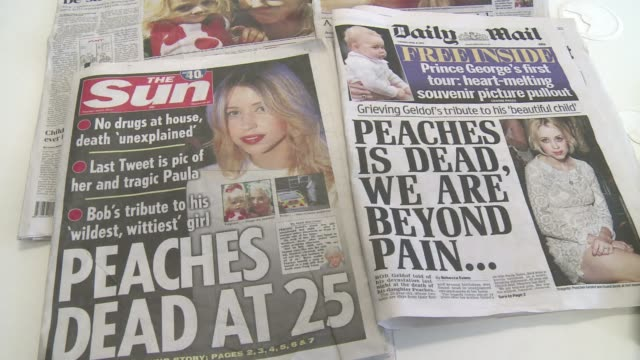 Live Aid founder Bob Geldof said his family was beyond pain at the death of his socialite daughter Peaches at the age of 25 on Monday