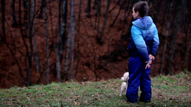 Lively Dog Spinning And  Running Around While Patient Boy, Pet Owner Awaits