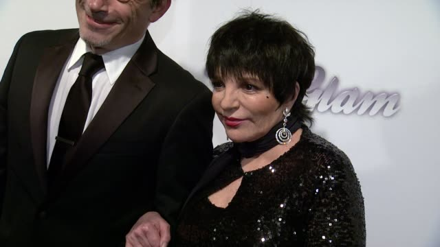 Liza Minnelli at 4th Annual amfAR Inspiration Gala New York at The Plaza Hotel on June 14 2013 in New York New York