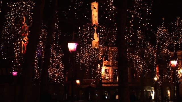 HD :リュブリャナのクリスマスの夜景