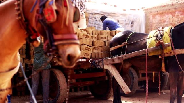 laden-karte des ziegels - transportmittel stock-videos und b-roll-filmmaterial
