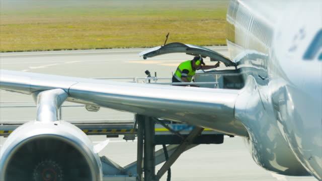 laden der ladung und entladen von flugzeug für luftfracht logistik - tierflügel stock-videos und b-roll-filmmaterial
