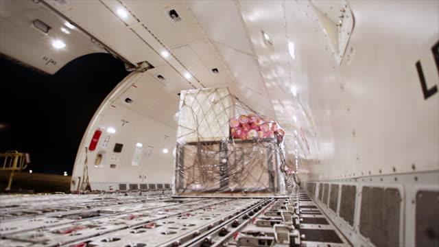 荷積レッグサイドに飛行機ラゲッジホールド - 証書点の映像素材/bロール