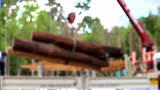 クレーンによるトラック上の丸太木材木材の積載 - 丸太点の映像素材/bロール