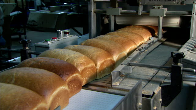 stockvideo's en b-roll-footage met loaves of bread move on a conveyor into a machine in a bread factory. - lopende band