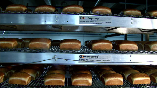 loaves of freshly baked bread move along conveyors. - loaf of bread stock videos & royalty-free footage