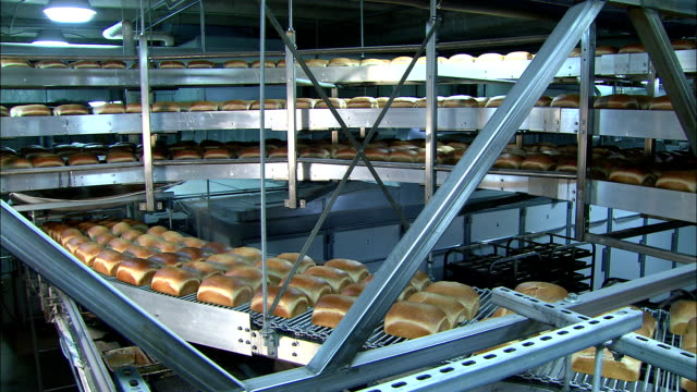 loaves of freshly baked bread move slowly along conveyors. - pane in cassetta video stock e b–roll