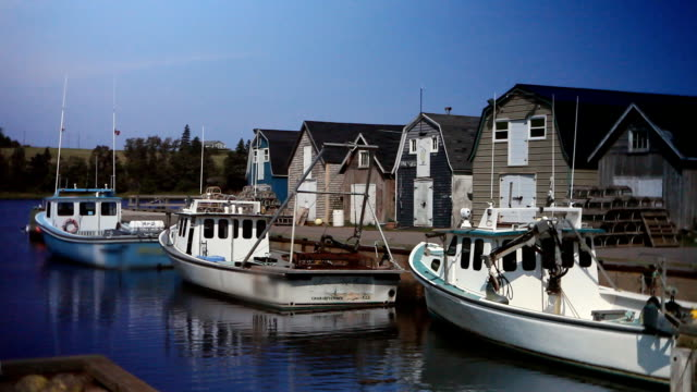 lobster and fishing boats in prince edward island harbour - fishing stock videos & royalty-free footage