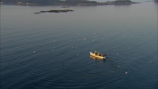 stockvideo's en b-roll-footage met aerial, lobster boat in seal harbor at sunrise, maine, usa - noord atlantische oceaan