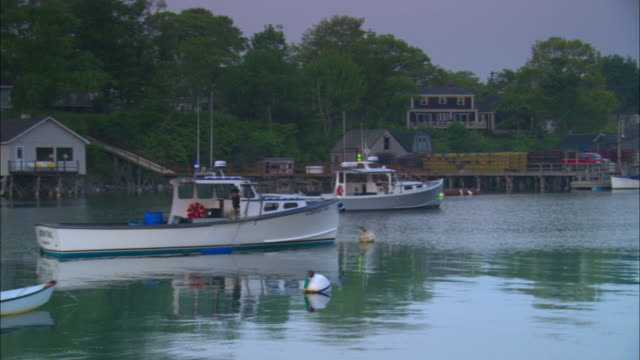 vídeos de stock e filmes b-roll de ms, lobster boats anchored in calm harbor at twilight, buildings and dock in background, new harbor, maine, usa - lagosta