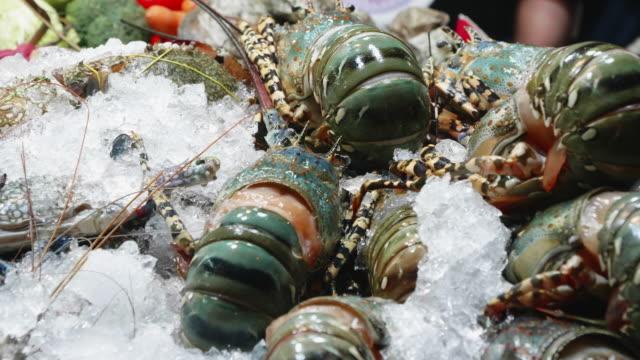 vídeos y material grabado en eventos de stock de camarones de pescado de langosta sobre hielo para venderen en yaowarat carretera china ciudad de bangkok,tailandia - pescado y mariscos
