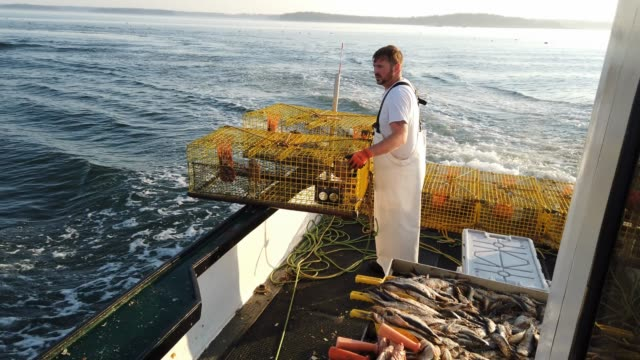 lobster fisherman nathaniel lane and his boat crew jeremy pratt and lance robbins motor out to check on traps in the gulf of maine on july 03 2019 in... - lobster stock videos & royalty-free footage