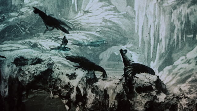 vídeos de stock e filmes b-roll de 1903 ws lobsters clambering on rocks during the film illusions, le royaume des fées (the kingdom of fairies) by georges melies - 1903