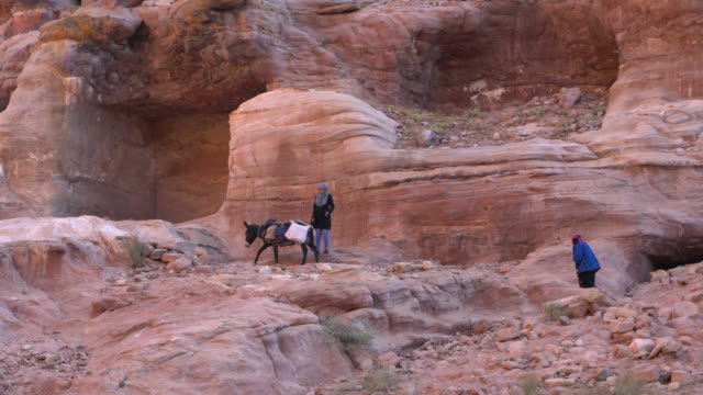 local bedouin with his donkey in a narrow canyon in the ancient arab nabatean kingdom city of petra - esel stock-videos und b-roll-filmmaterial