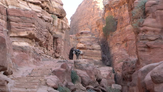 Local bedouin with his donkey in a narrow canyon in the ancient Arab Nabatean Kingdom city of Petra