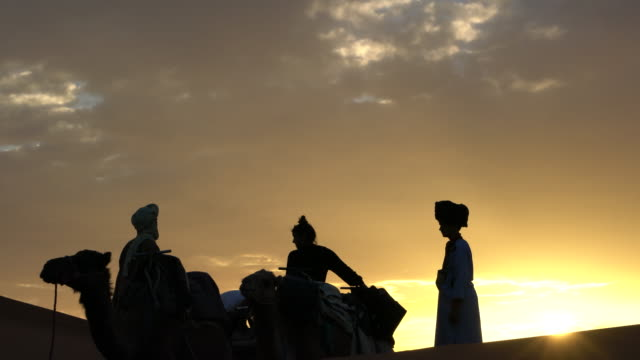 local bedouins with their camels and some tourist among the dunes of erg chebbi at sunset, saharan morocco - camel train stock videos & royalty-free footage