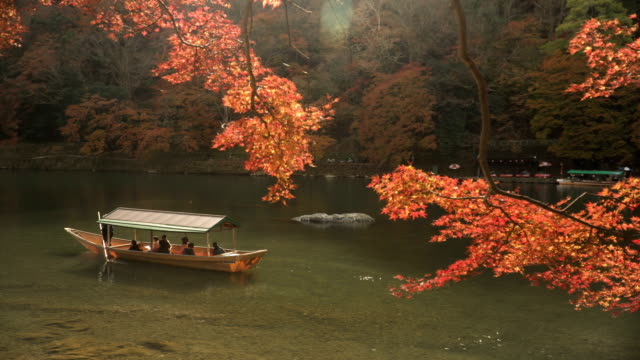 local boat in katsura river amid autumn leaf forest at arashiyama - giapponese video stock e b–roll