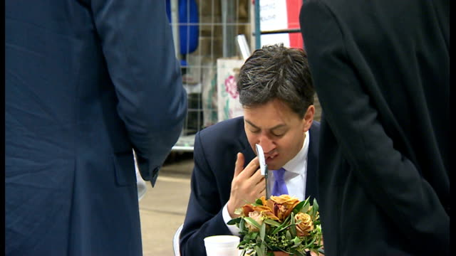 results labour lib / t21051407 london new covent garden market photography*** ed miliband eating bacon sandwich during visit to flower market - bacon stock videos & royalty-free footage