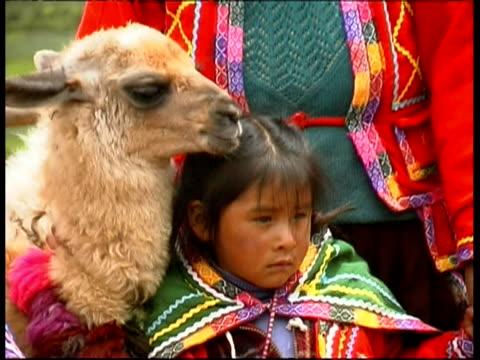 local people wearing traditional clothes with llama, peru - lama oggetto creato dall'uomo video stock e b–roll