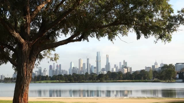local residences exercise in the park at albert park lake on september 9 in melbourne australia metropolitan melbourne remains under stage 4 lockdown... - lockdown stock videos & royalty-free footage
