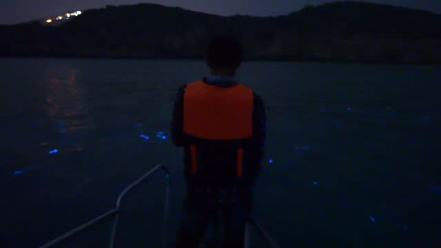 local resident andy chow onboard a boat in the matsu islands witnessed the natural phenomenon that is sometimes referred to as 'sea sparkle'. from... - light natural phenomenon stock videos & royalty-free footage