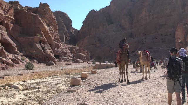 local riding his camel among tourists on the main road in petra, jordan - 6th century bc stock videos and b-roll footage