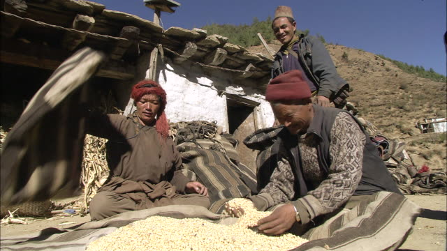 ms local villagers trading salt for grain / hurikot village, low himalayas, dolpo, nepal     - traditionally tibetan stock videos & royalty-free footage
