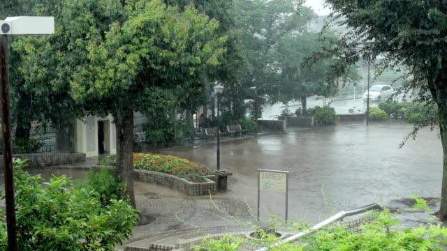 パン、ローカライズされた集中豪雨ます。 - 集中豪雨点の映像素材/bロール
