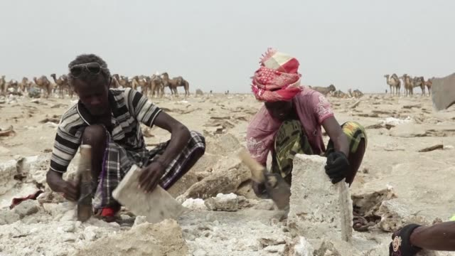 locals in ethiopia's mineralrich afar depression have been mining salt deposits by hand for generations undaunted by the scorching climate and the... - salt mineral stock videos & royalty-free footage