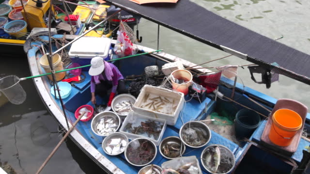 locals selling fish from their boats in the fishing village of tai o in hong kong - fish market stock videos and b-roll footage