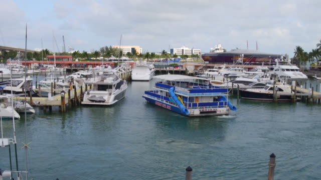 located on biscayne bay in the heart of downtown miami, visitors of bayside marketplace can experience the international cuisine, fine shops and... - biscayne bay stock-videos und b-roll-filmmaterial