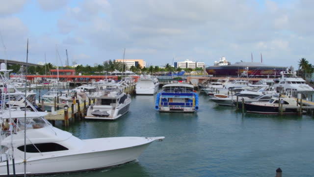 located on biscayne bay in the heart of downtown miami, visitors of bayside marketplace can experience the international cuisine, fine shops and... - international landmark video stock e b–roll