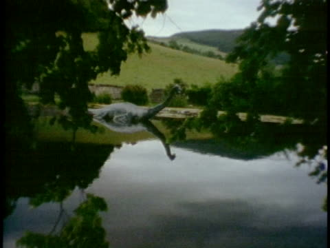 ws loch ness monster sculpture on edge of water as seen through trees/ inverness-shire, scotland - 1989 stock videos & royalty-free footage