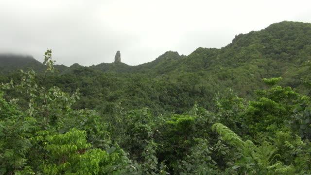lock down of green-colored mountain at rarotonga cook islands - rarotonga stock videos & royalty-free footage