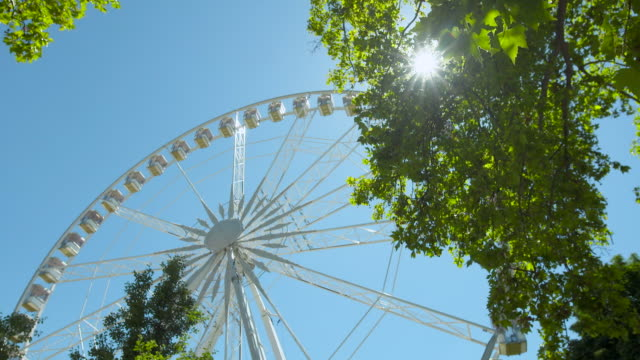 lockdown: a ferris wheel spins slowly seen through thick tree foliage - 夏休み点の映像素材/bロール