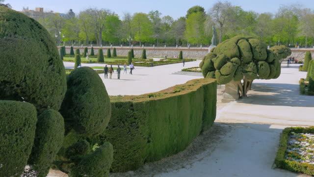 vídeos y material grabado en eventos de stock de lockdown: amazing sculpted trees in el retiro - museum