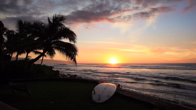 stockvideo's en b-roll-footage met lockdown: hanging by the beach of oahu on a sunset - oahu