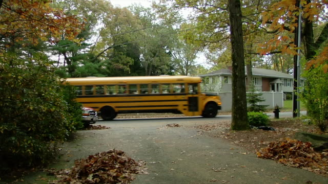 Lockdown of driveway with piles of raked leaves / school bus driving past
