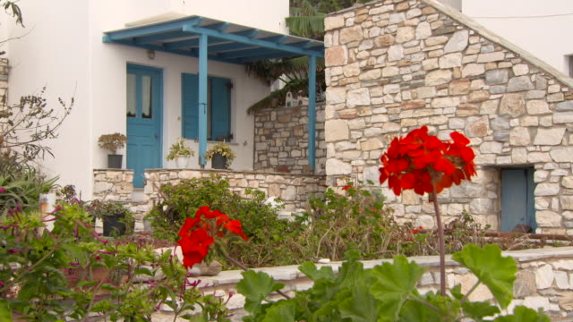 lockdown: red geraniums before a stone and whitewashed house with blue detailing - stone house stock videos & royalty-free footage