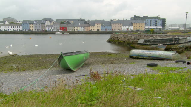 lockdown shot of boats moored on shore while birds swimming in sea against buildings - galway, ireland - moored stock videos & royalty-free footage