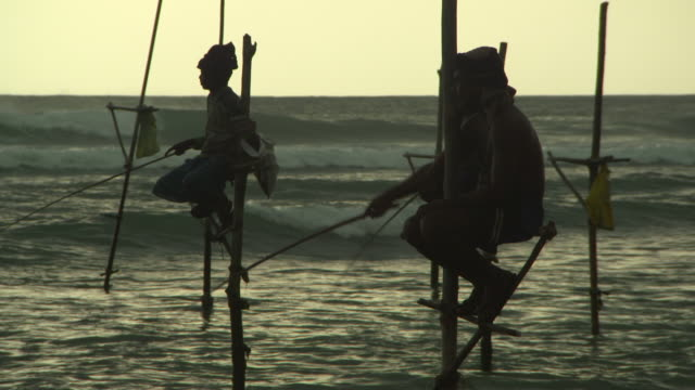 lockdown shot of fishermen doing stilt fishing in sea at beach during sunset against sky - arugam bay, sri lanka - sri lankan culture stock videos & royalty-free footage