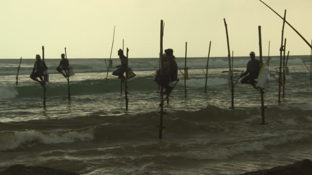 lockdown shot of fishermen in sea doing stilt fishing at beach during sunset against sky - arugam bay, sri lanka - sri lankan culture stock videos & royalty-free footage