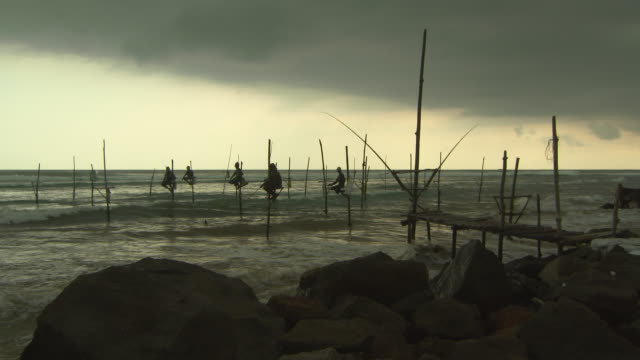 lockdown shot of fishermen in sea doing stilt fishing near rocks at beach during sunset against sky - arugam bay, sri lanka - sri lankan culture stock videos & royalty-free footage
