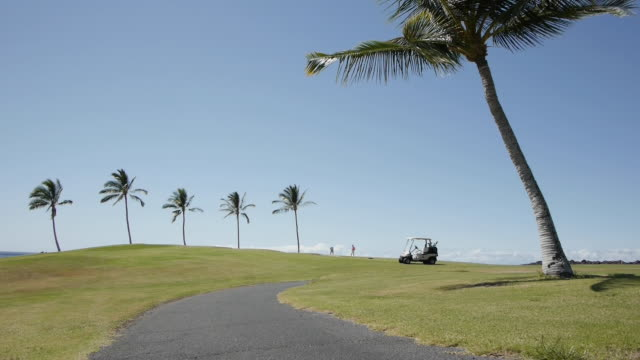 lockdown shot of golfers in distance and palm trees on field against blue sky - golf cart stock videos & royalty-free footage