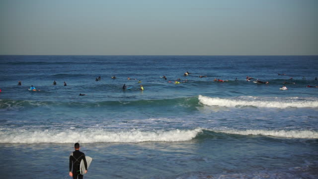 lockdown shot of people surfing on waves in sea against sky on sunny day - jaffa, israel - jaffa stock videos & royalty-free footage