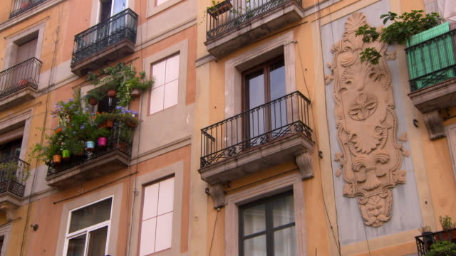 lockdown shot of potted plants in balcony of residential building - barcelona, spain - facade stock videos & royalty-free footage