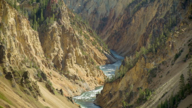 lockdown shot of river flowing amidst rock formations on sunny day - yellowstone national park, wyoming - river yellowstone stock videos & royalty-free footage