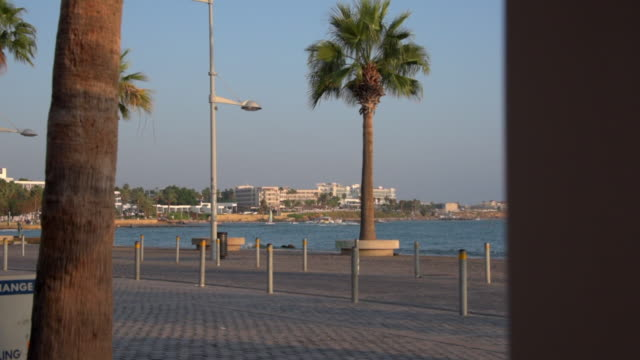 stockvideo's en b-roll-footage met lockdown shot of tree by street light on promenade with tourists in city near sea against sky during sunny day - paphos, cyprus - repubiek cyprus