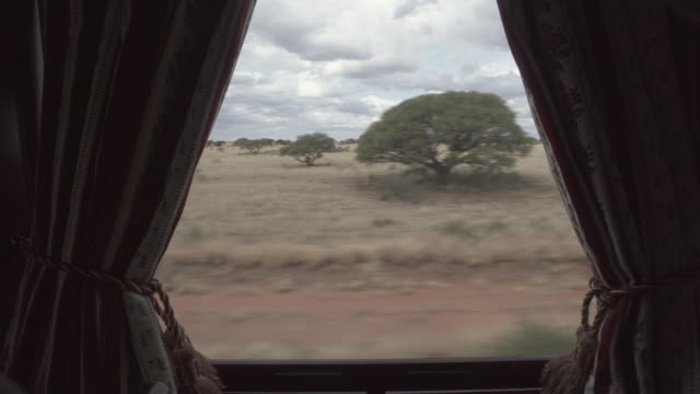 lockdown shot of trees and plants seen through luxury train window, beautiful railroad journey against sky - swakopmund, namibia - curtain stock videos & royalty-free footage