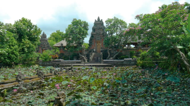 WS Lockdown shot of Ubud Palace and Lotus Pond, Ubud, Bali, Indonesia